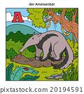 German alphabet, letter A (anteater) 20194591