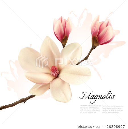 magnolia buddhist singles Personal ads for magnolia, ar are a great way to find a life partner, movie date, or a quick hookup personals are for people local to magnolia, ar and are for ages 18+ of either sex.