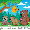 bears, nature, vector 20222500