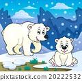 벡터, 테마, 곰 20222532