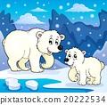 벡터, 테마, 곰 20222534