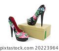 Female high heeled shoes isolated on shoe box 20223964