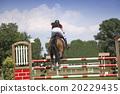 Young girl jumping on horseback 20229435