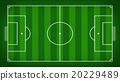 soccer field or football field  20229489