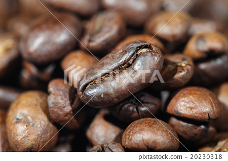 Roasted Coffee Beans 20230318