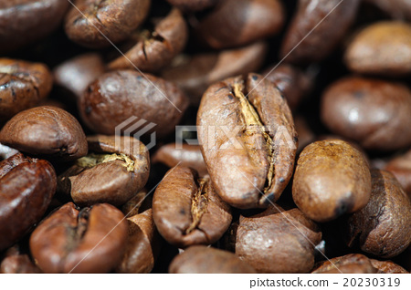 Roasted Coffee Beans 20230319