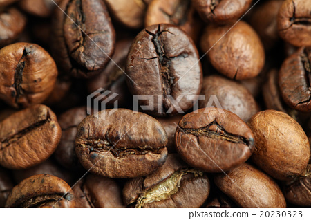Roasted Coffee Beans 20230323