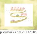 櫻花 櫻 賞櫻 20232185