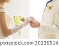 婚禮 結婚 結婚了的 20239514