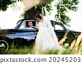 Bride and groom in car 20245203