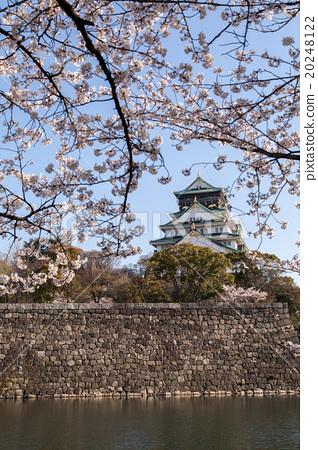 Spring Osaka Castle 20248122