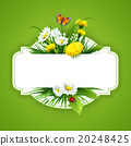 Fresh spring background with grass, dandelions and 20248425