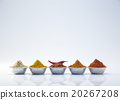 spices 20267208