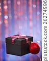 christmas gift 20274596