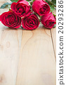 Red roses on woonden background. Valentine's day 20293286