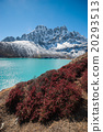 Autumn color at Gokyo lake  20293513