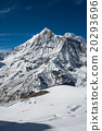 Mountaineers with the stunning view of Annapurna  20293696