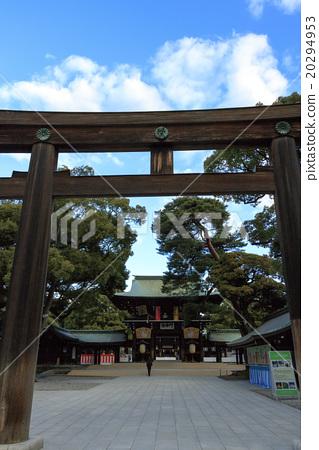 Winter sunny Meiji Jingu 20294953