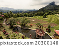 Rice terraces in Bali 20300148