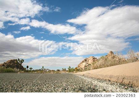 Joshua Tree National Park 20302363
