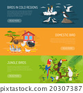Bird Horizontal Banners Set 20307387