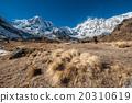 Trekking in Annapurna region, Nepal 20310619