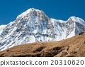 Trekking in Annapurna region, Nepal 20310620