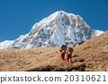 Trekking in Annapurna region, Nepal 20310621
