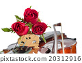 Violin and red roses on white background 20312916
