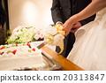 蛋糕切割 婚禮 手 20313847