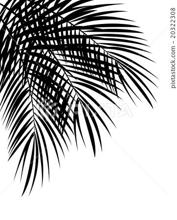 Palm Leaf Vector Background Illustration 20322308