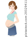 女性 在怀孕期间 妊娠 20329411