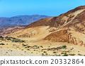 montana Blanca, Tenerife, Canary Islands, Spain 20332864