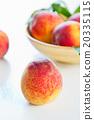 Peach 20335115