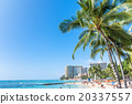 夏威夷 檀香山 威基基海滩 20337557