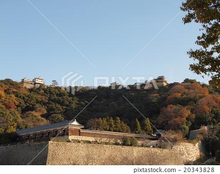 Matsuyama Castle 20343828
