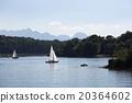 Sailing boats at lake Chiemsee, Bavaria, Germany 20364602