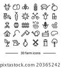 농장, 농원, 농지 20365242