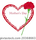 Mother's Day Carnation 20368663