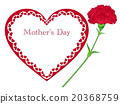 Mother's Day Carnation 20368759