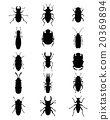 silhouettes of bugs 20369894