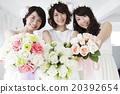 婚礼 新娘 女性 20392654