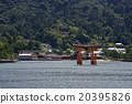 Itsukushima shrine 20395826