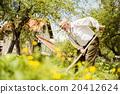 Old farmer on the meadow 20412624