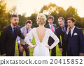 Groomsmen looking at bride 20415852