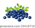 blueberries, blueberry, fruits 20416710