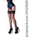 Long female legs in pinup stockings and shoes 20426695