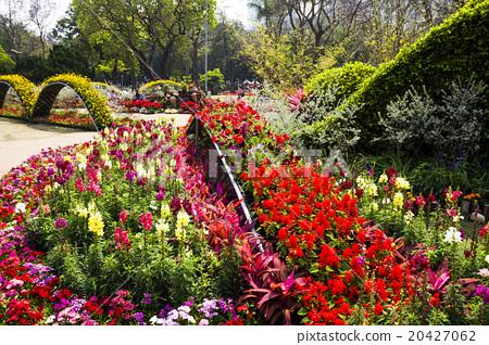 公園裡的花海-亞洲台灣台南的台南公園 20427062