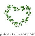 Fresh Green Leaves in A Heart Shape 20430247