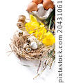 Easter decoration with quail eggs 20431061